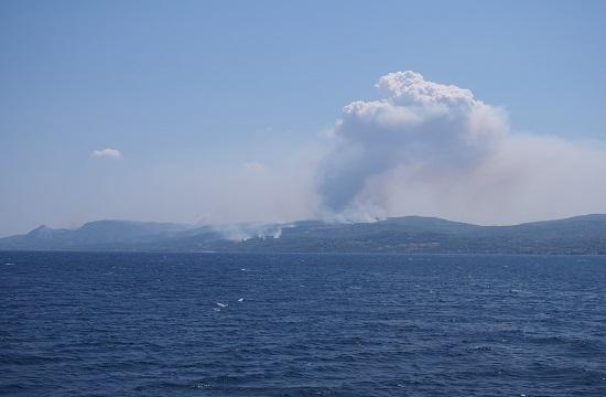 AP: Greek firefighters battle major wildfires near Athens