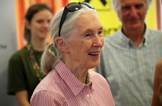 An evening with Dr Jane Goodall in Thessaloniki, Athens and Crete (video)