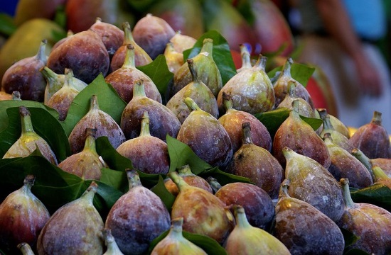 Greek figs are among the world's best Superfoods