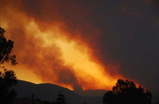 Cypriot aircraft continuing to help battle Israeli wildfires