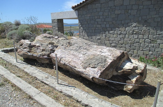 Earth life evolution evidence from fossilised forest on Greek island of Lesvos