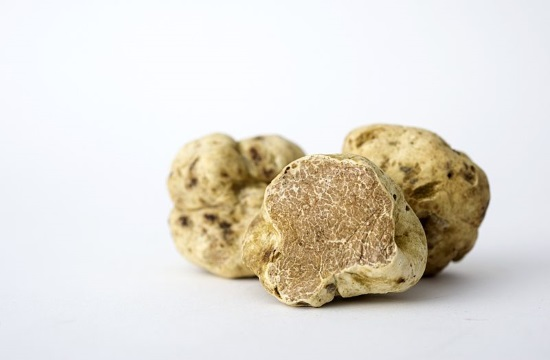 Gourmet Greek truffles reach US market and beyond