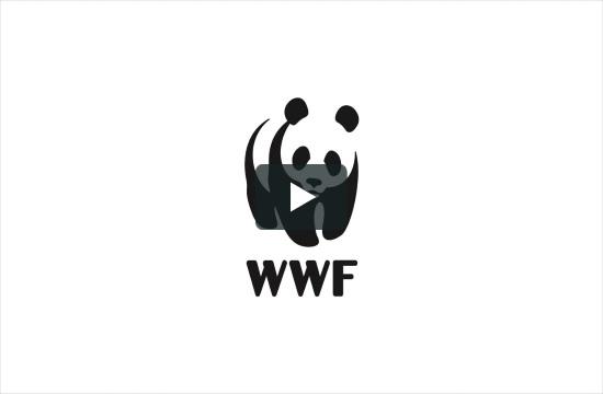 """WWF's ship """"Blue Panda"""" tours Ionian Sea in Greece"""