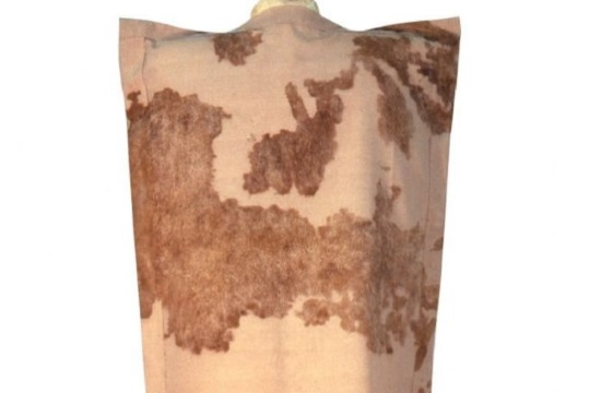 Tornos News Spectacular Fabric From Greek Dark Ages Unearthed In