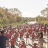 """Navarino Challenge lauded as """"Best Tourism Event in Greece"""""""