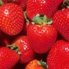 Greek strawberries, tangerines and kiwi delicatessen in southern Asia