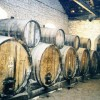 """Achaia Clauss Winery in Patra: A """"must visit"""" site for wine lovers"""