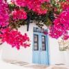 Aqua Vista Hotels: Strong start in Paros with Acqua Vatos Paros