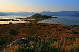 'Red carpet' of Phelypaea flowers blooms around Prespes Lakes in Greece's Macedonia