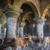 Religious Tourism: Greek Holy church in Turkey abandoned to ruin