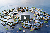 The world's first floating city to be built within the next decade (video)