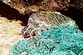 Fisherman in Cyprus saves turtle with plastic ring around her neck (video)