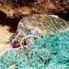 """Two tons of """"ghost nets"""" removed from Greek seabed by Healthy Seas initiative"""