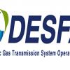 Snam-led consortium wins tender for 66% stake in DESFA
