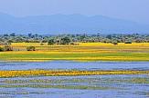 Nature tourism at Kerkini Lake praised by major British travel agencies