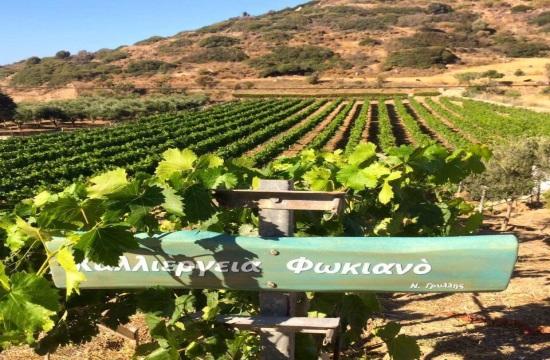 Στα καλύτερα ελληνικά κρασιά ο οίνος των Λειψών