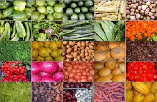 Η πανδημία στρέφει τις εταιρείες τροφίμων στις φυτικές πρωτεΐνες επόμενης γενιάς
