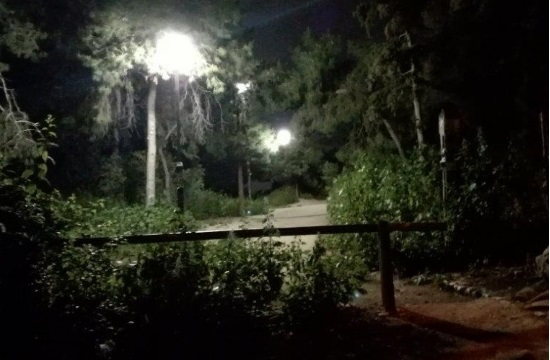 Αποκατάσταση του φωτισμού στο Άλσος Ευελπίδων