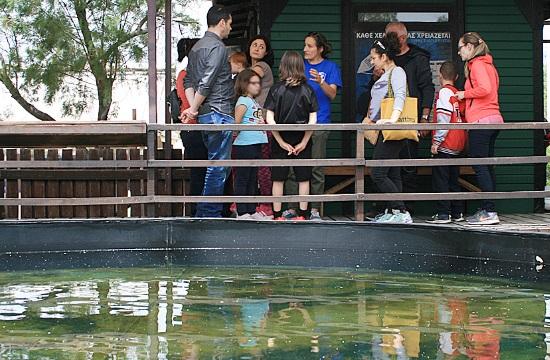 ΑΡΧΕΛΩΝ: Το Sea Turtle Rescue Tour στο Κέντρο Διάσωσης Θαλάσσιων χελωνών στη Γλυφάδα