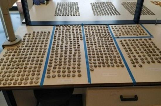 Τελωνείο Κήπων: Συνελήφθη Τούρκος με 1.055 αρχαία ελληνικά νομίσματα
