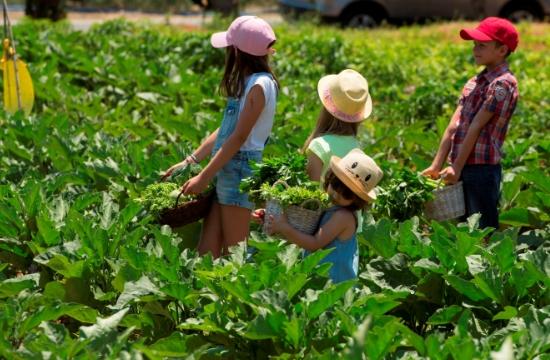 Costa Navarino: Νέες δραστηριότητες για παιδιά