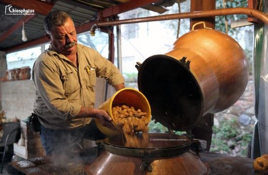 Το καζάνισμα της Σούμας, το παραδοσιακό ποτό της Χίου
