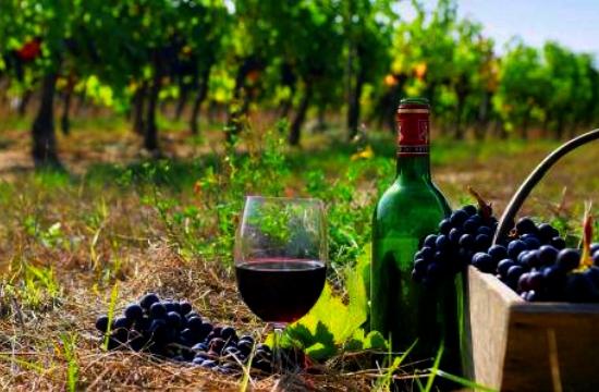 Η ακτινογραφία των ελληνικών εξαγωγών κρασιού στη Βρετανία