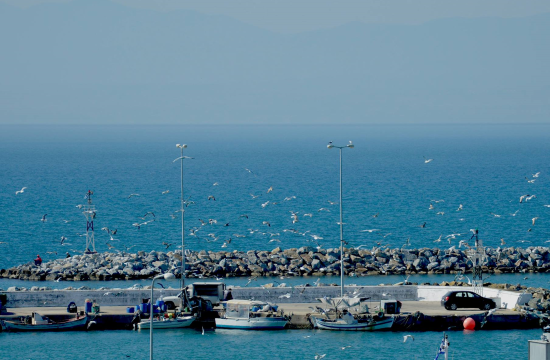 Μουσείο Φυσικής Ιστορίας και Θάλασσας γίνεται το κτίριο Δίας στη Ν.Μηχανιώνα