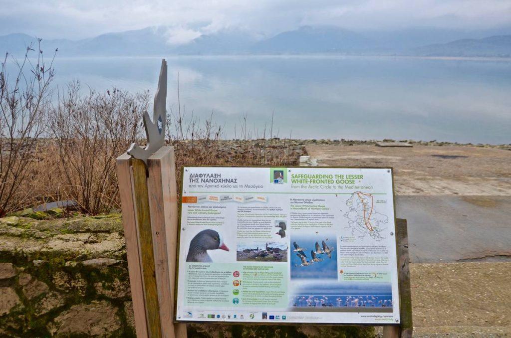 Γαστρονομική εμπειρία στη λίμνη Κερκίνη