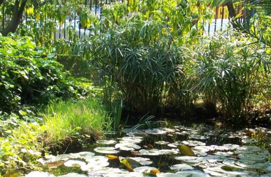 Ανοίγει για το κοινό ο ιστορικός Βοτανικός Κήπος του ΕΚΠΑ