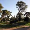 Δήμος Αμαρουσίου: Κατά της εκμετάλλευσης του Δάσους Συγγρού με πρόσχημα την τουριστική ανάπτυξη