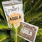 Τα Coffee Island τιμούν την Παγκόσμια Ημέρα καφέ με τον καινοτόμο 21ο Microfarm Project® – Ethiopia Motherland Adola.