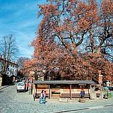 Δύο νέα προγράμματα για την αύξηση του τουρισμού στο Μέτσοβο