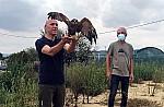 Γιώργος Αμυράς: Ασπίδα ζωής για οκτώ είδη άγριας πανίδας και χλωρίδας με οκτώ αποφάσεις