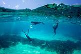 Booking.com | Ποιο ελληνικό πρότζεκτ στον αειφόρο τουρισμό απέσπασε χρηματοδότηση