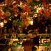 Η Αθήνα γιορτάζει - όλες οι εορταστικές εκδηλώσεις των ημερών