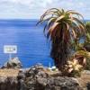 Η Ελλάδα μπορεί να διεκδικήσει μειωμένο ΦΠΑ σε νησιά - Τί δείχνει η πρακτική σε ευρωπαϊκά νησιά