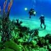 «Πράσινο φως» για καταδυτικό πάρκο στα Χανιά- Τεχνητοί ύφαλοι και βύθιση 2 πλοίων