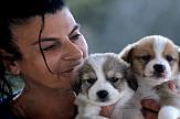 Αφιέρωμα στο Never Walk Alone   Μαρίκα Καμάρη: Μια γυναίκα φύλακας άγγελος για χιλιάδες αδέσποτα σε όλη την Ελλάδα