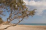TripΑdvisor: Το Ελαφονήσι καλύτερη επιλογή για διακοπές παραλίας το Μάρτιο
