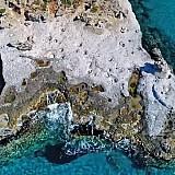 Το μοναδικό απολιθωμένο φοινικόδασος της Ευρώπης βρίσκεται στην Ελλάδα