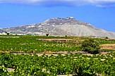 Irish Τimes: Η Ελλάδα ιδανικός προορισμός για τους φίλους του λευκού κρασιού