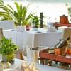 HOTREC: Οι ταξιδιώτες αποθεώνουν το ελληνικό φαγητό - Οι προσδοκίες τους από τα ξενοδοχεία