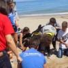 Το Aquila Rithymna Beach τίμησε την Παγκόσμια Ημέρα Χελώνας
