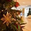 Χριστούγεννα στην Αθήνα - όλο το πρόγραμμα εκδηλώσεων