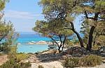 Κρήτη: Καινοτόμα εφαρμογή για τους καλλιεργητές αρωματικών και φαρμακευτικών φυτών