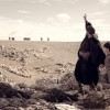 """Ο ΕΟΤ στηρίζει τη νέα ταινία του Γ. Σμαραγδή """"ΝΙΚΟΣ ΚΑΖΑΝΤΖΑΚΗΣ"""""""