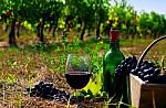 H ακτινογραφία της ισπανικής αγοράς κρασιού και η θέση της Ελλάδας