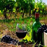 To ελληνικό κρασί ταξίδεψε στο Λονδίνο