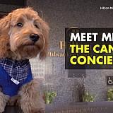 Μάιλι, ο πιο κεφάτος υπάλληλος του ξενοδοχείου Hilton Milwaukee